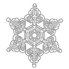 Snowflake Fernlike Stellar Dendrites Coloring Pages