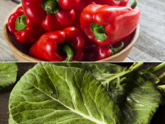 Foods To Eat When Pregnant: First Trimester Diet