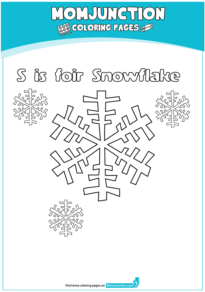 S-For-Snowflake-16