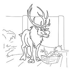 Sven-Deer-17
