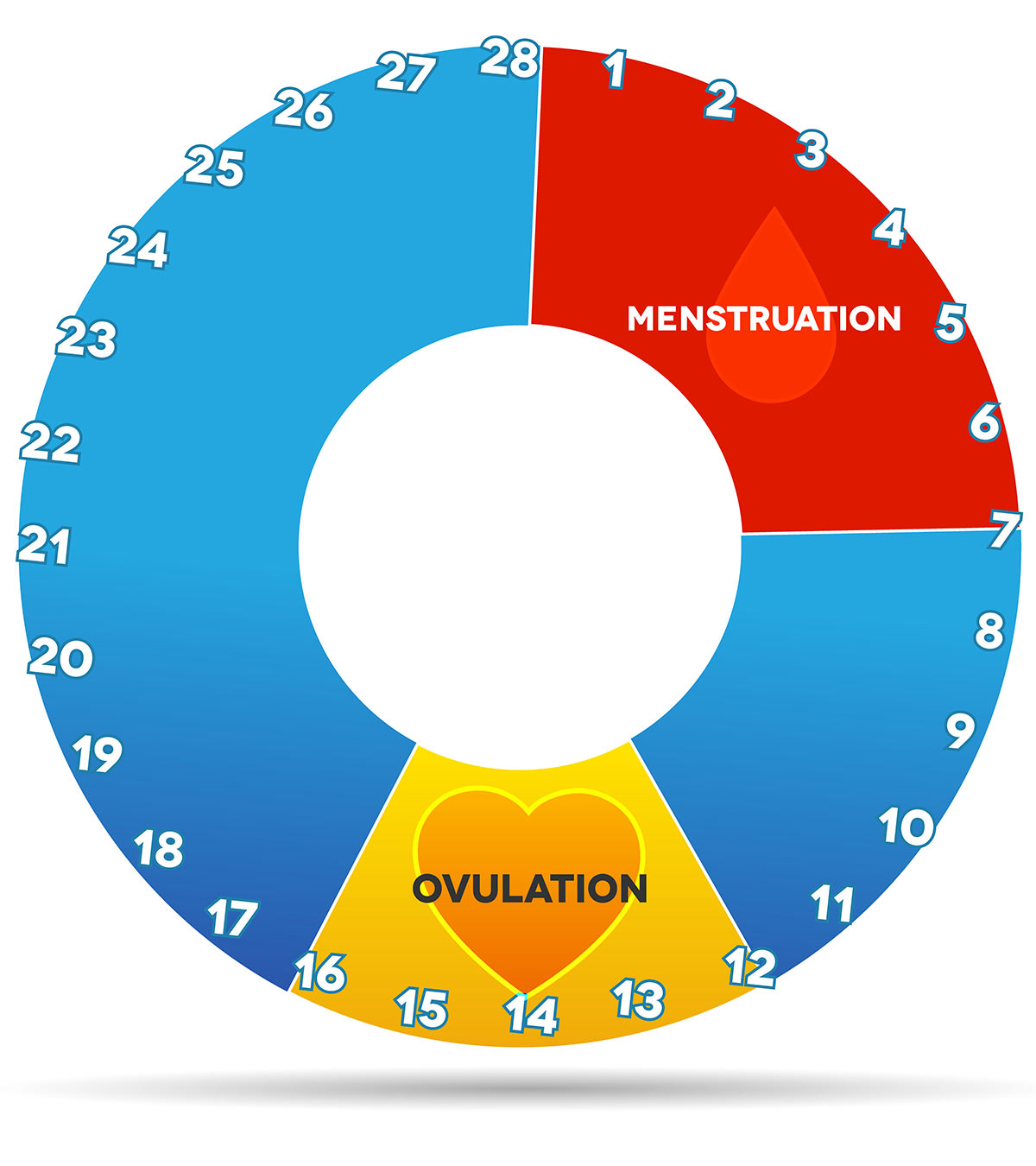 Cervical Mucus During Ovulation - All You Need To Know