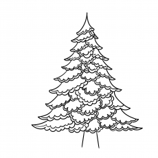 Christmas-Tree-Contour-17