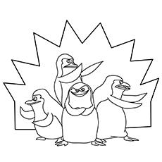 The-Cute-Penguins-Of-Madagascar-16