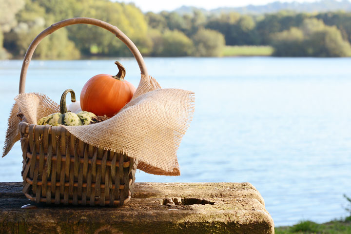 Pumpkin Water Race