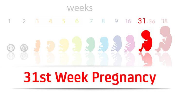31st Week Pregnancy: Symptoms, Baby Development And Body Changes
