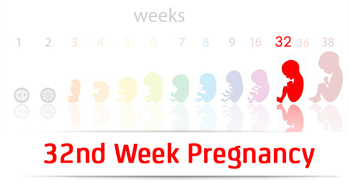 32nd Week Pregnancy: Symptoms, Baby Development And Body Changes