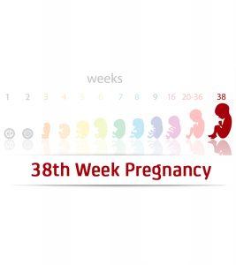 38th-Week-Pregnancy