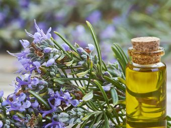 6 Amazing Health Benefits Of Using Rosemary Oil During Pregnancy