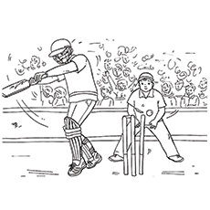 A-Cricket-Match