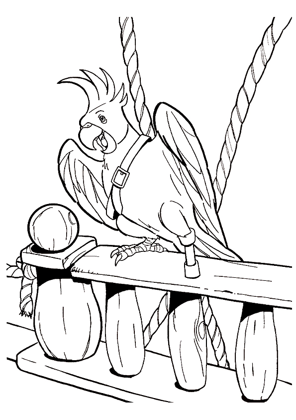 Parrot-Pirate