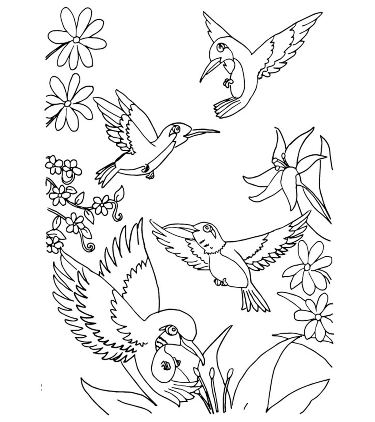 Coloring Pictures Of Birds Flying | 1350x1200