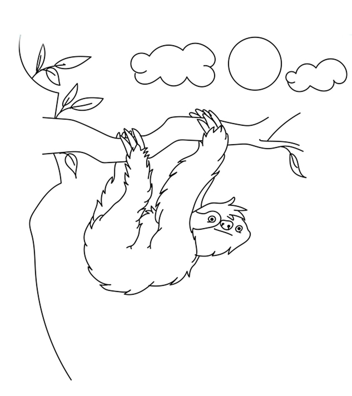 - Top 10 Sloth Coloring Pages For Your Toddler