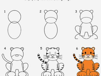 How To Draw A Tiger Step By Step For Kids?