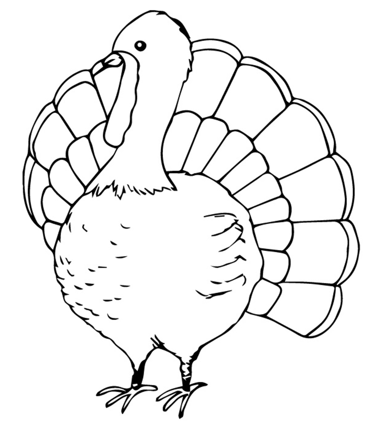- Top 25 Turkey Coloring Pages For Toddlers