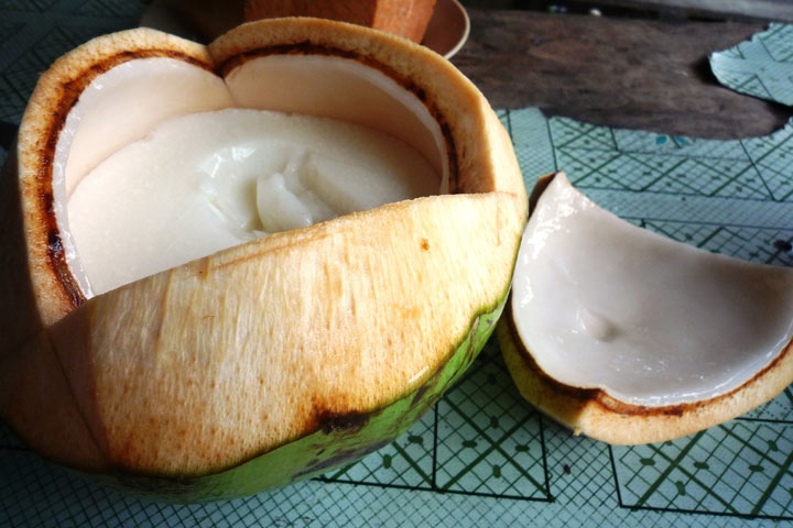 Benefits Of Coconut Meat During Pregnancy