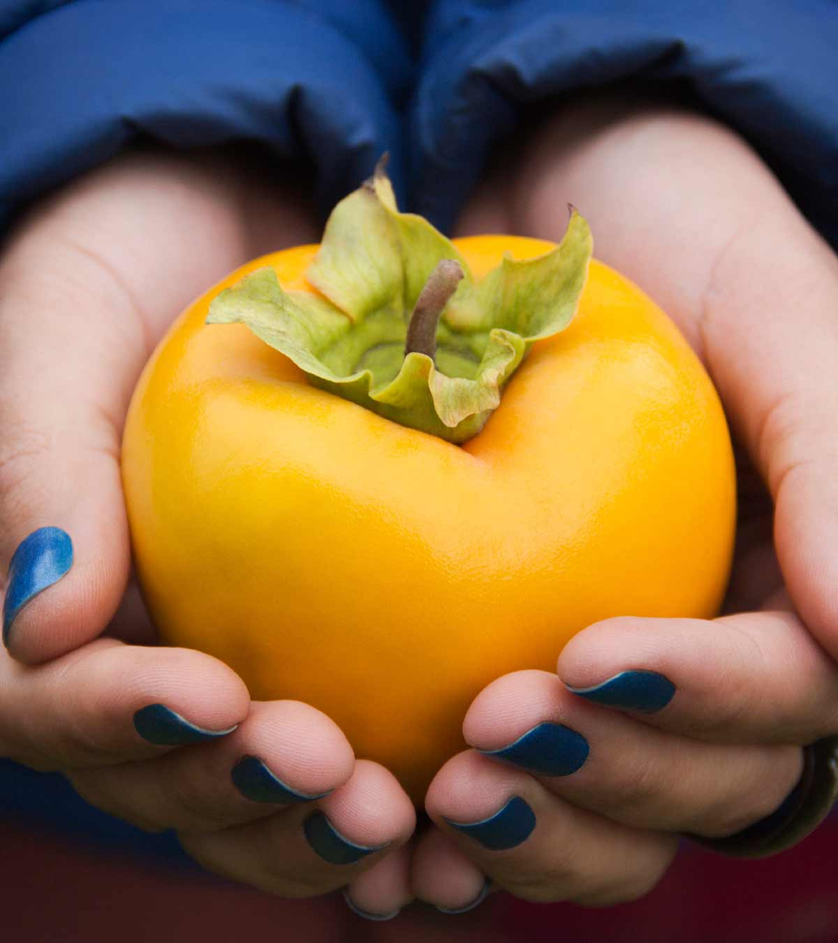 Is It Safe To Eat Persimmon During Pregnancy?