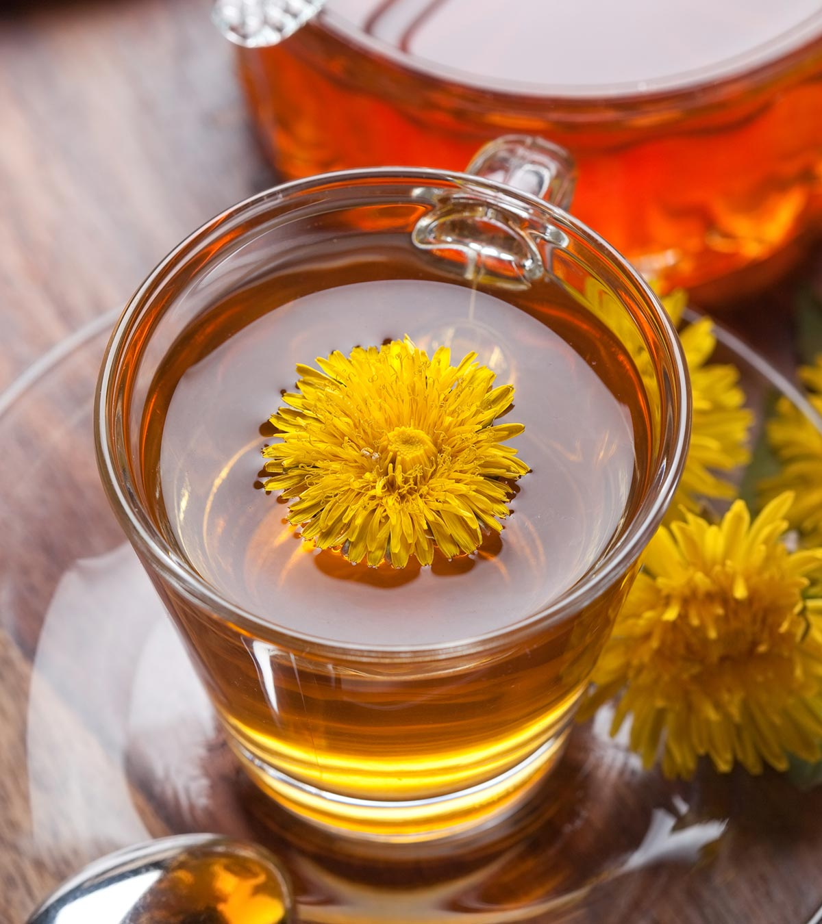 Is It Safe To Take Dandelion Tea During Pregnancy?