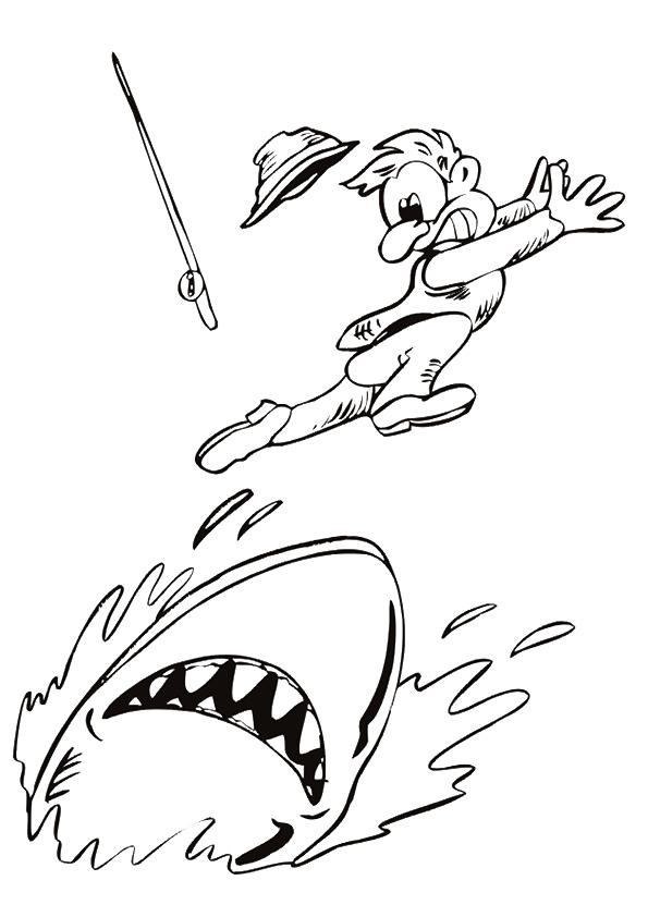 Shark-Chasing-A-Fisherman