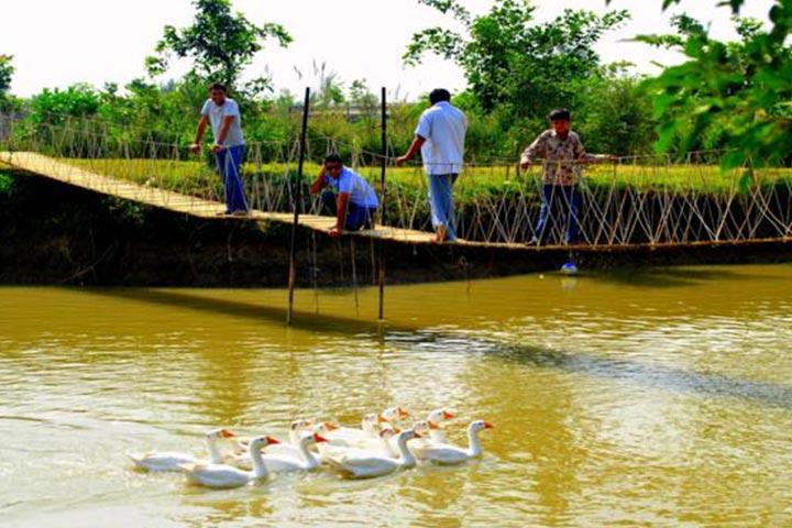 Pratapgarh Farms And Resorts Jhajjar, Gurgaon Images