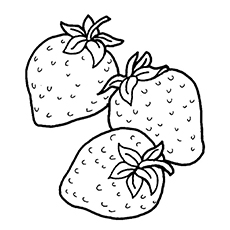 Three Strawberries Coloring Pages