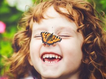15 Amazing Facts About Butterfly For Kids