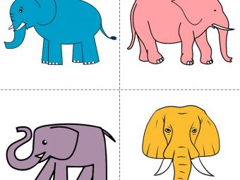 How To Draw An Elephant For Kids In Easy Steps?