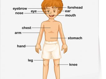 Teaching About Body Parts To Kids