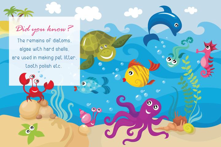 Fish 4 fun dating facts