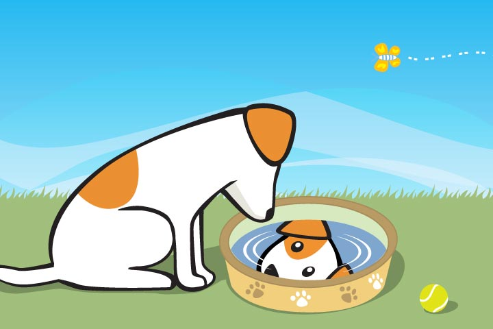 Dog and a well story