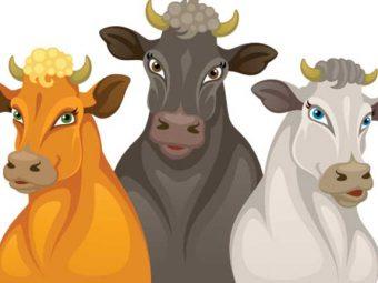 बैल और शेर की कहानी | Lion And Three Bulls Story in hindi