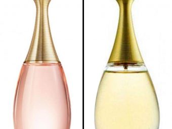 10 Best Dior Perfumes For Women In 2021