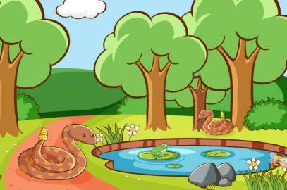 सांप की सवारी करने वाले मेंढक की कहानी   Frogs That Rode A Snake Story In Hindi