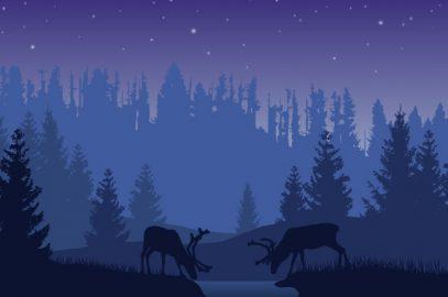 जातक कथा: लक्खण मृग की कहानी   The Story Of The Two Deer In Hindi