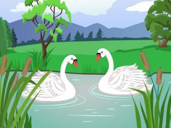 जातक कथा: दो हंसों की कहानी   The Story of Two Swans