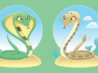 दो सांपों की कहानी | Two Snakes Story In Hindi