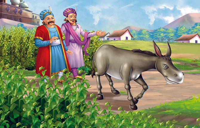 Magical Donkey Story