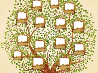 8 Easy Family Tree Drawing Ideas For Kids, With Steps