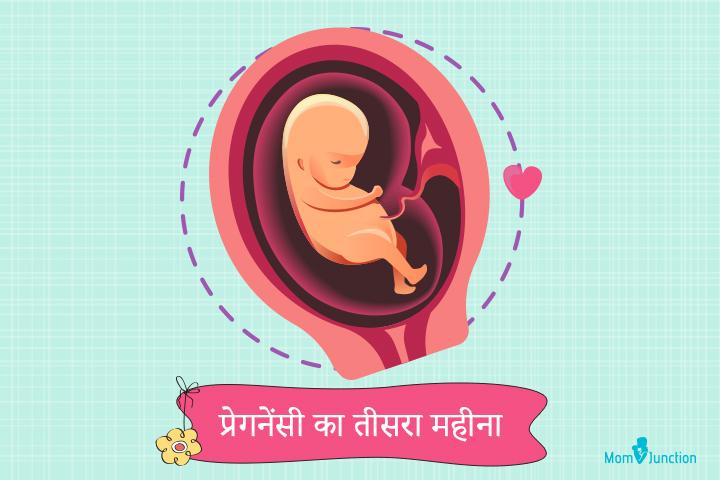 Third month of pregnancy