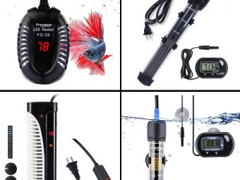 15 Best Aquarium Heaters In 2021 With Buying Guide