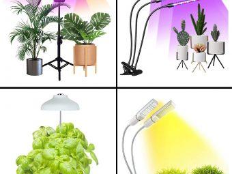 15 Best Grow Lights For Indoor Plants