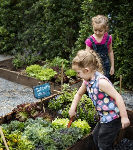 20 Fun DIY Garden Ideas For Kids Of All-Ages