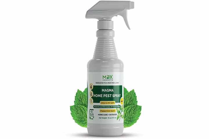 Max Magma Home Pest Spray