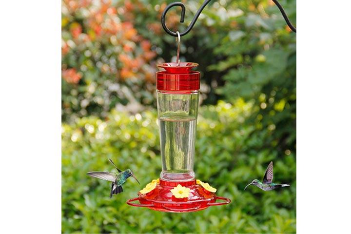 Shrdaepe Glass Hummingbird Feeder