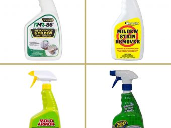 11 Best Shower Cleaners For Mold And Mildew In 2021