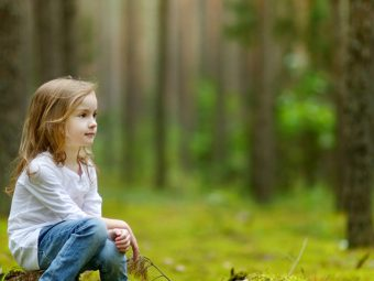 25 Informative And Fun Facts About Forests For Kids