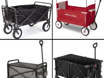 13 Best Folding Wagons In 2021