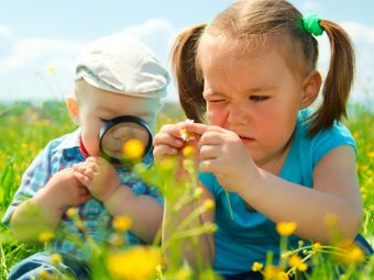 Anatomy Of A Flower: Parts, Functions, Pictures, And Facts For Kids